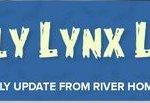 fam lynx letter
