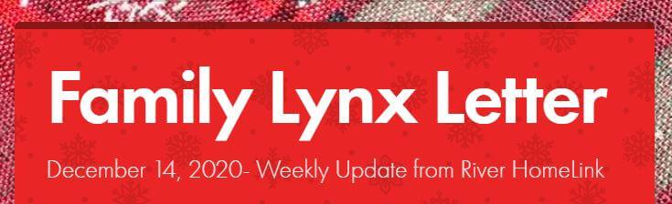 lynx letter